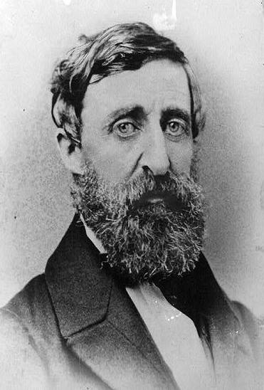A picture of the author Henry David Thoreau