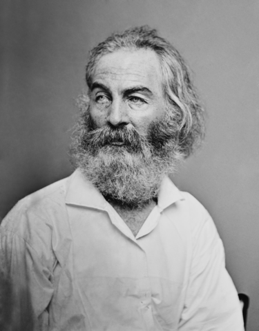 A picture of the author Walt Whitman