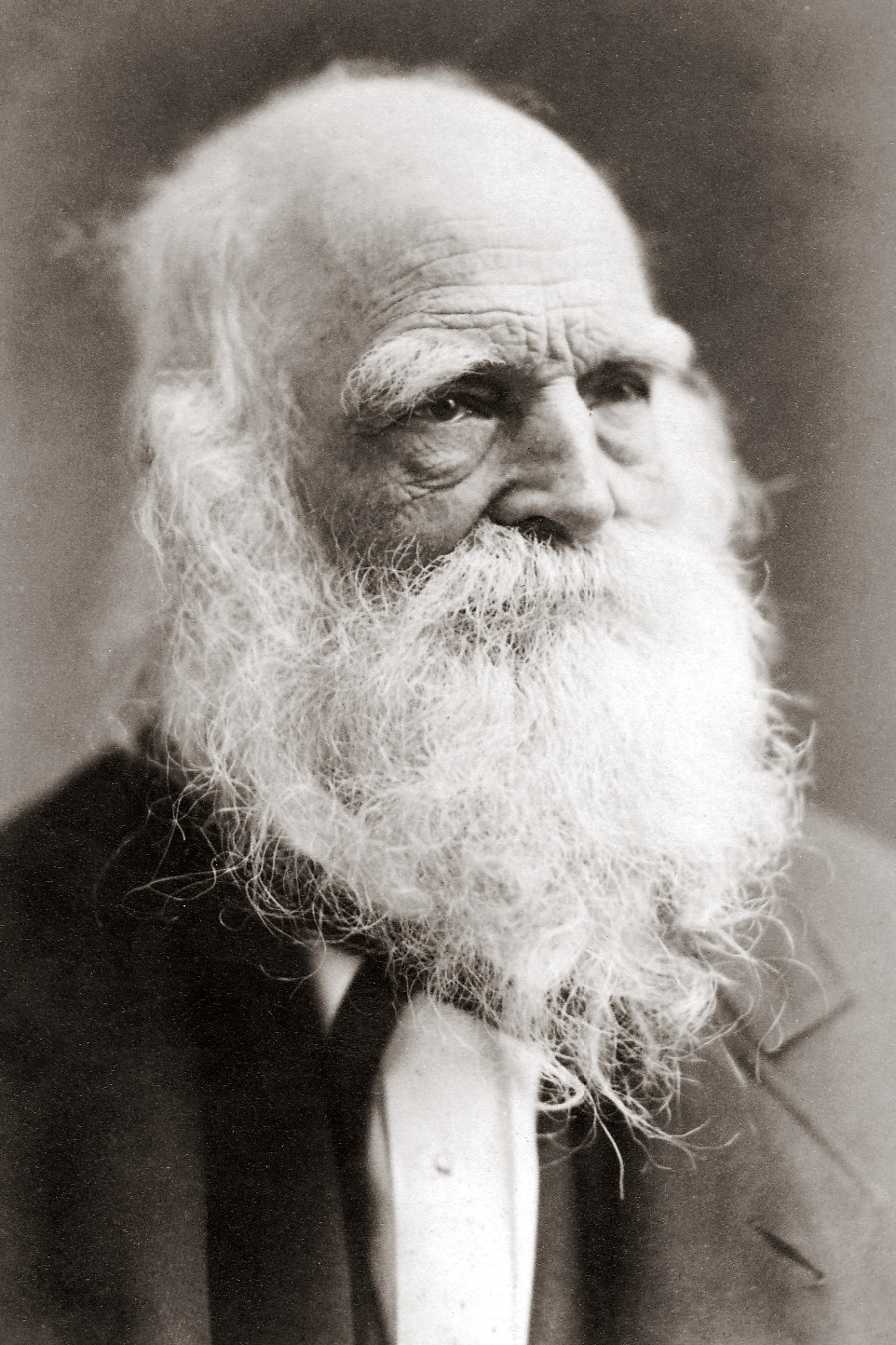 A picture of the author William Cullen Bryant