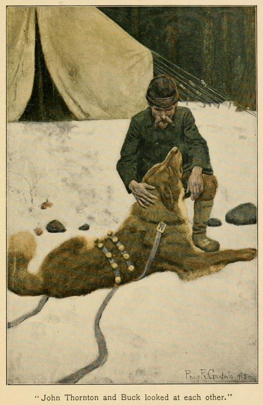 call wild summary by jack london The call of the wild by jack london is one of the best books ever the story revolves around a dog named buck.
