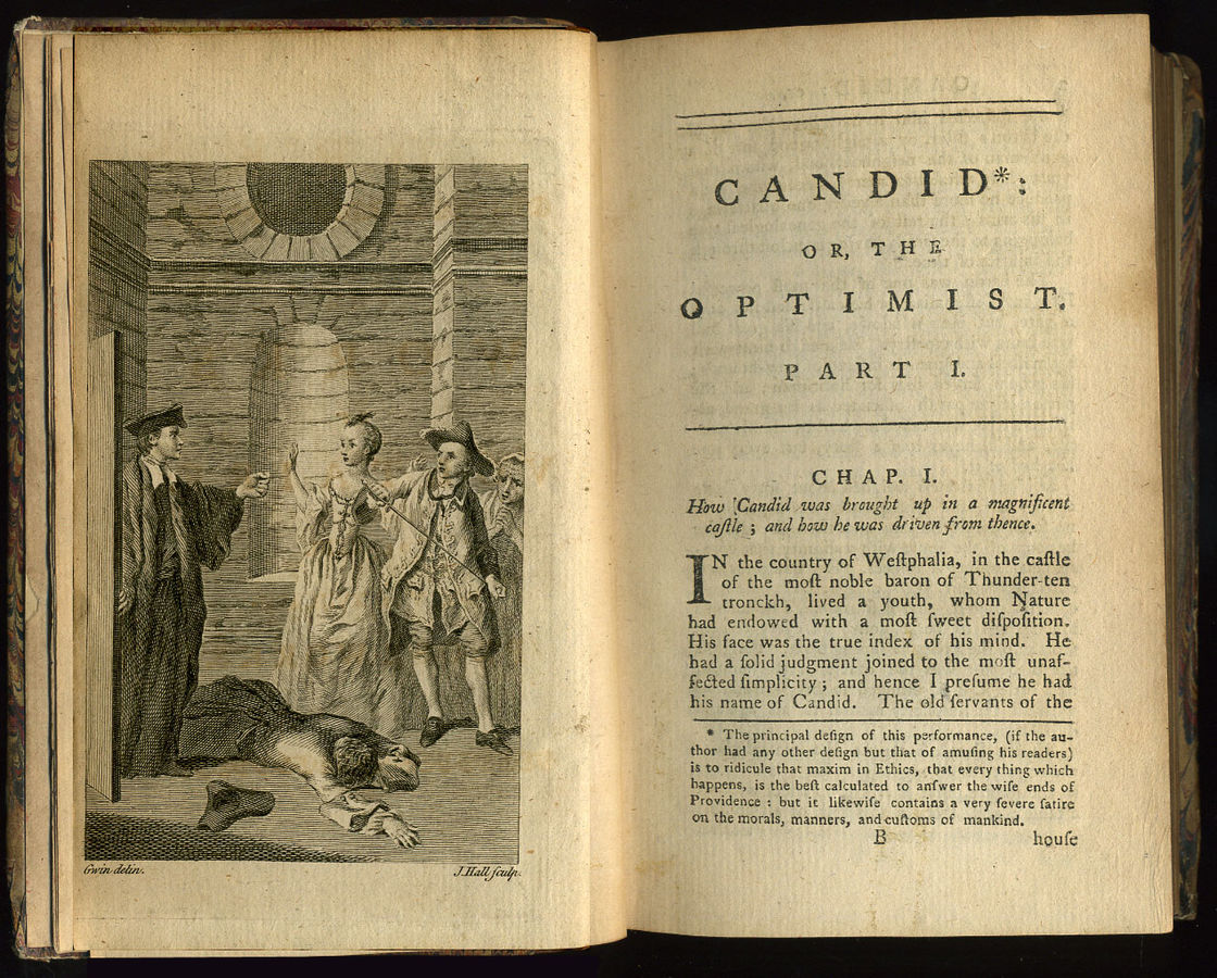 A picture for the book Candide; or, The Optimist