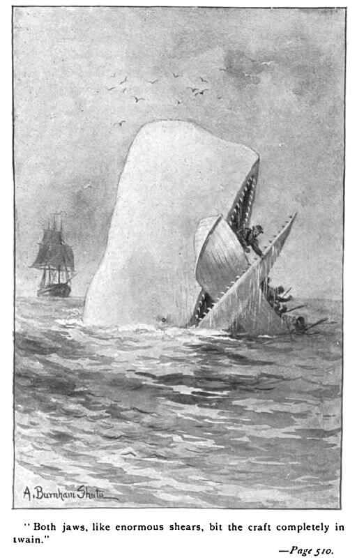 Moby-Dick bit the boat in two