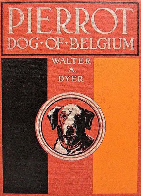Pierrot, Dog of Belgium, 1915