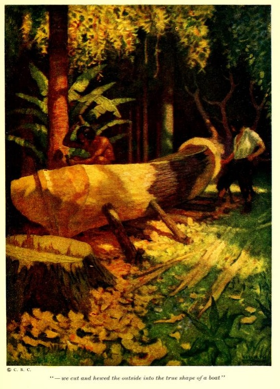 A picture for the book Robinson Crusoe