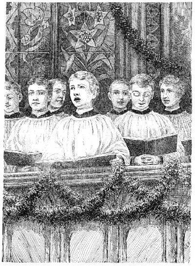A picture for the book The Birds' Christmas Carol