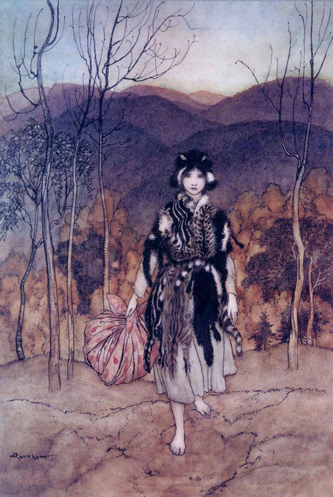 An illustration for the story Allerleirauh by the author The Brothers Grimm
