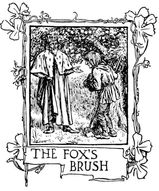 An illustration for the story The Fox's Brush by the author The Brothers Grimm