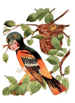 Elizabeth Gordon, Bird Children, baltimore oriole