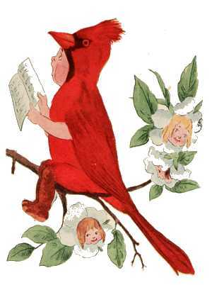 Elizabeth Gordon, Bird Children, cardinal