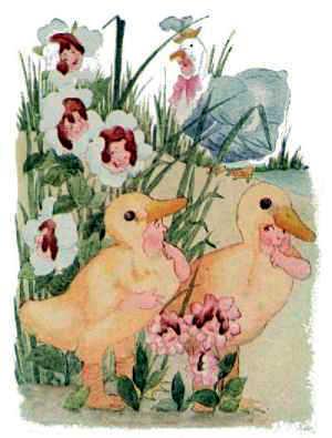 Elizabeth Gordon, Bird Children, duckling