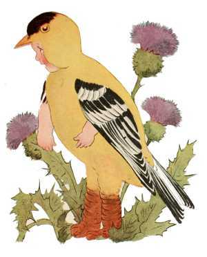 Elizabeth Gordon, Bird Children, goldfinch