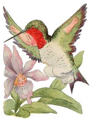 Elizabeth Gordon, Bird Children, hummingbird