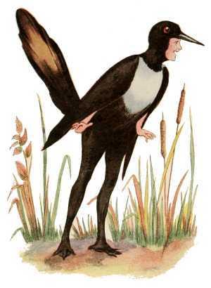 Elizabeth Gordon, Bird Children, magpie