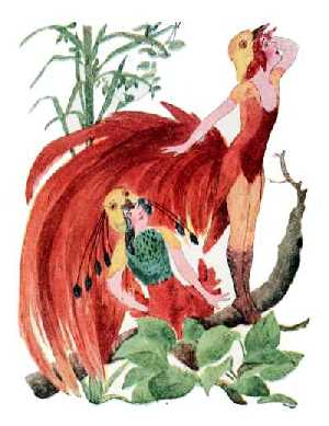 Elizabeth Gordon, Bird Children, paradise bird