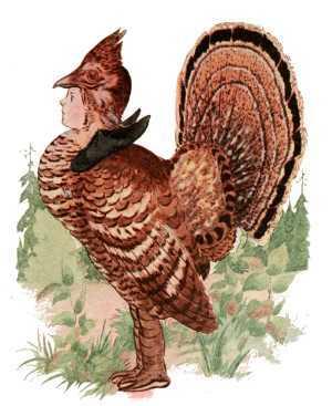 Elizabeth Gordon, Bird Children, partridge