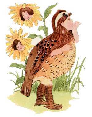 Elizabeth Gordon, Bird Children, quail