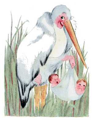 Elizabeth Gordon, Bird Children, stork