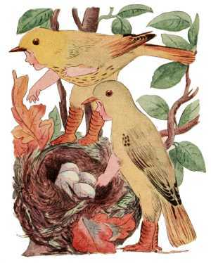 Elizabeth Gordon, Bird Children, yellow warbler