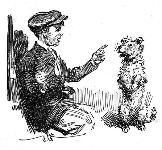 An illustration for the story A Boy and His Dog by the author Booth Tarkington