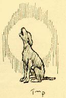 A Dark Brown Dog Study Guide: illustration of The Dog