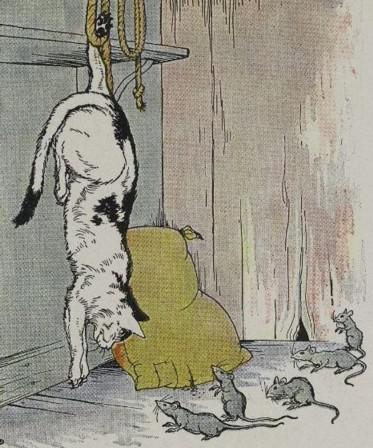 An illustration for the story The Cat And The Old Rat by the author Aesop