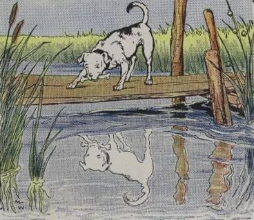 An illustration for the story The Dog And His Reflection by the author Aesop