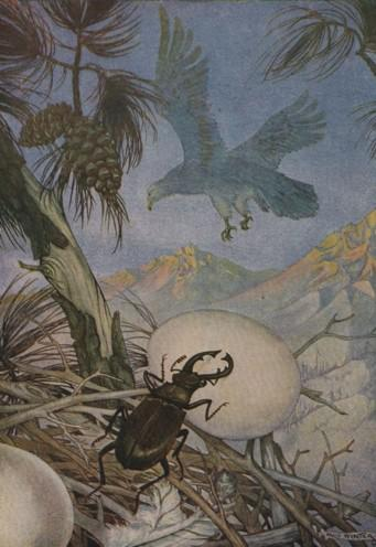 An illustration for the story The Eagle And The Beetle by the author Aesop