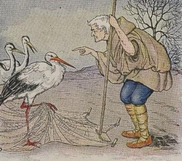 An illustration for the story The Farmer And The Stork by the author Aesop