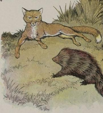 An illustration for the story The Fox And The Hedgehog by the author Aesop