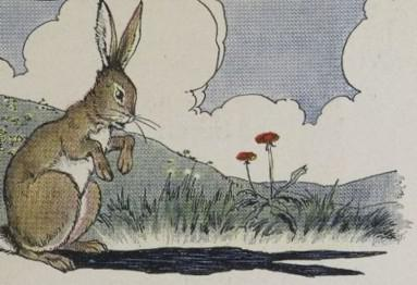 An illustration for the story The Hare And His Ears by the author Aesop