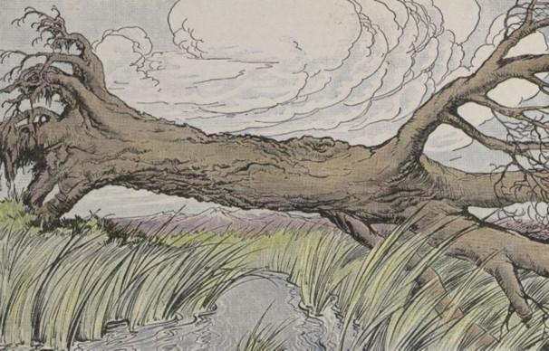 An illustration for the story The Oak And The Reeds by the author Aesop