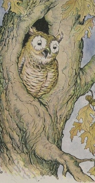 An illustration for the story The Owl And The Grasshopper by the author Aesop