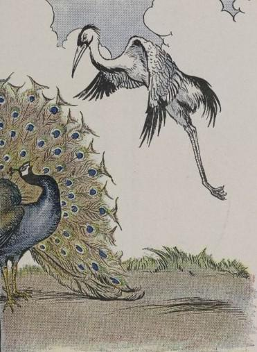 An illustration for the story The Peacock And The Crane by the author Aesop