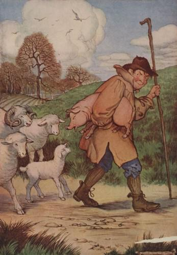 An illustration for the story The Sheep And The Pig by the author Aesop