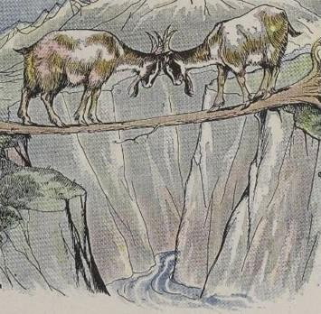 An illustration for the story The Two Goats by the author Aesop