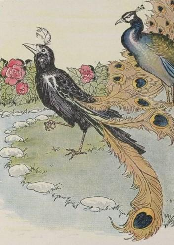 An illustration for the story The Vain Jackdaw And His Borrowed Feathers by the author Aesop
