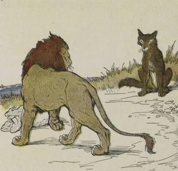 An illustration for the story The Wolf And The Lion by the author Aesop