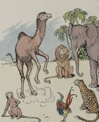 Aesop's Fables - The Monkey and the Camel Fable
