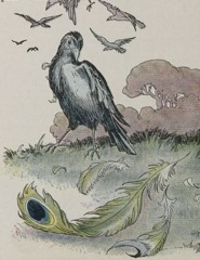 Aesop's Fables - The Vain Jackdaw 2 Fable