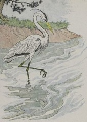 Aesop's Fables - The Heron Fable