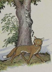 Aesop's Fables - The Cat and the Fox Fable
