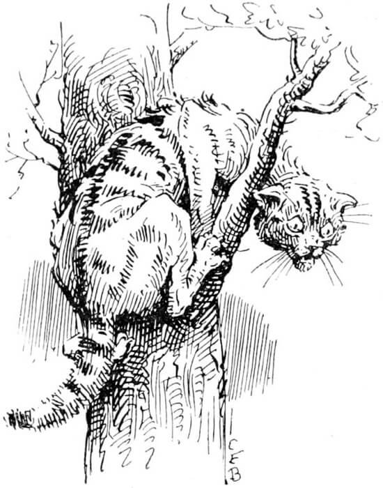 An illustration for the story Music by the author Ambrose Bierce