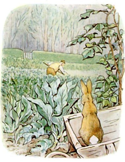 Peter Rabbit in wheelbarrow