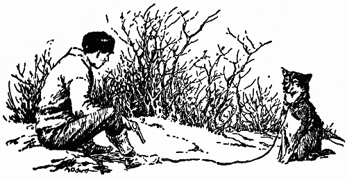 An illustration for the story That Spot by the author Jack London