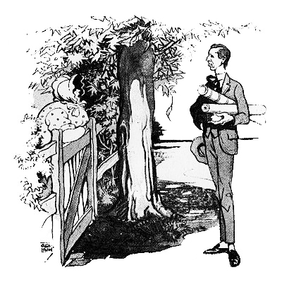 illustration for Ellis Parker Butler's short story The Chicken