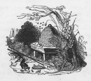 An illustration for the story The Dog and the Bees by the author Ambrose Bierce