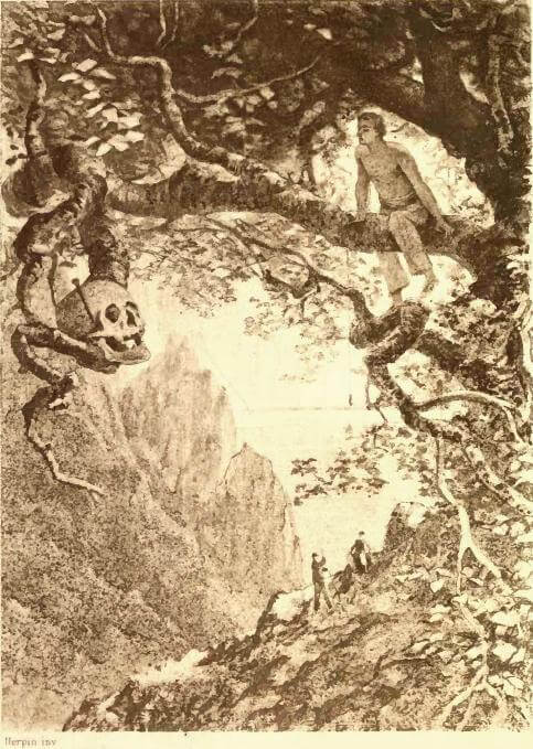 An illustration for the story The Gold-Bug by the author Edgar Allan Poe