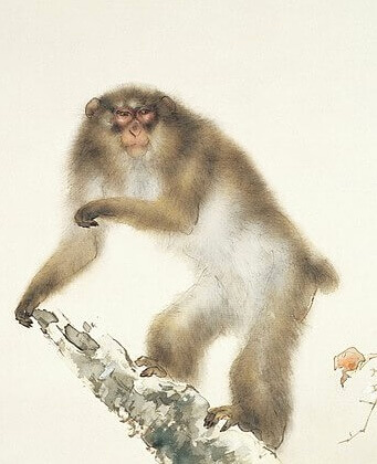 An illustration for the story The Sagacious Monkey and the Boar by the author