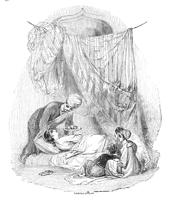 An illustration for the story The Story of the Three Apples by the author Arabian Nights
