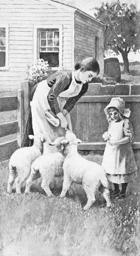 An illustration for the story The Twin Lambs by the author Clara Dillingham Pierson